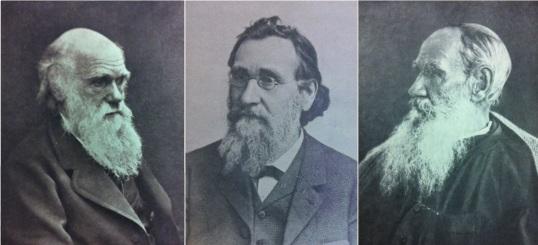 Darwin, Mechnikov, Tolstoy