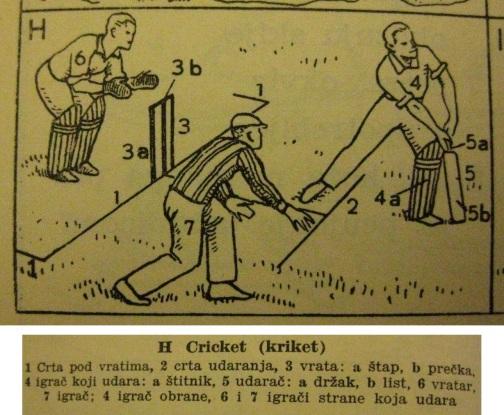 201702_cricket