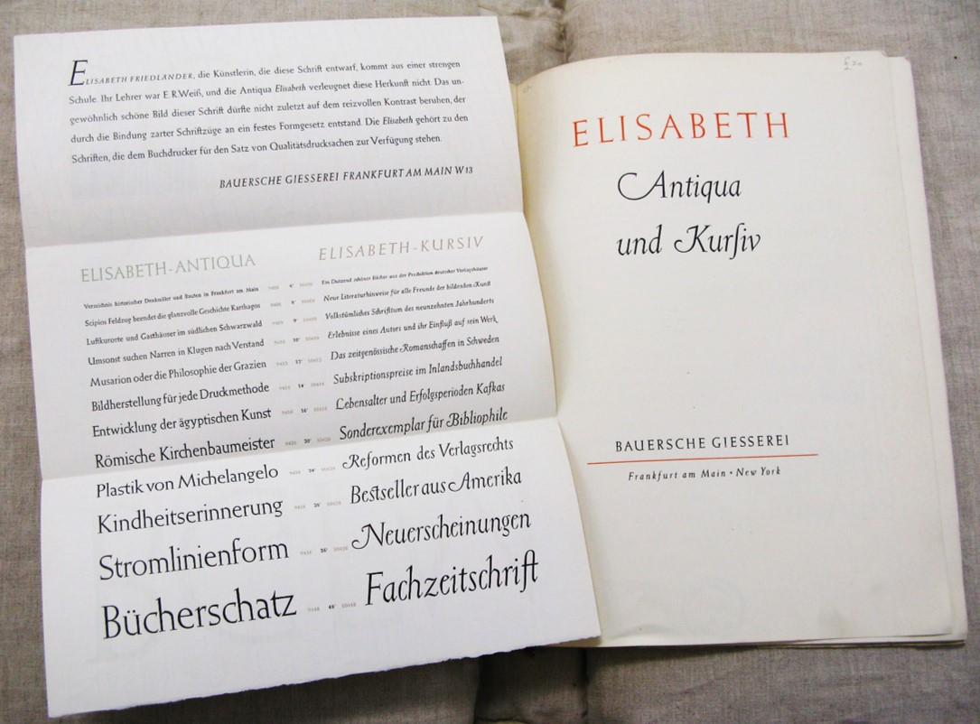 Elizabeth Friedlander, modern print designer |