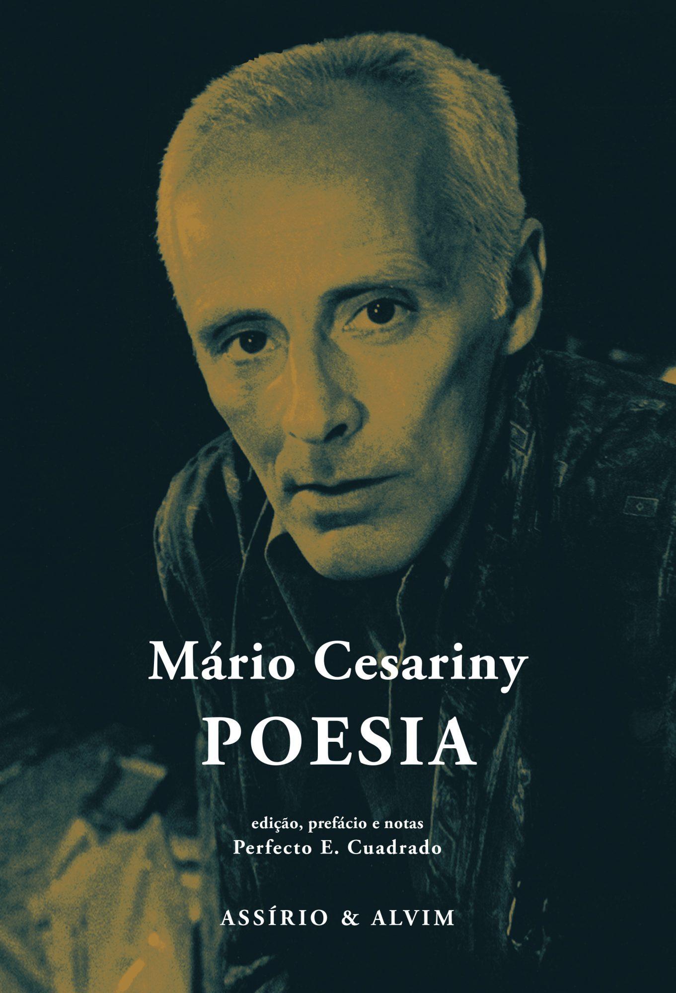 Mario Cesariny museu